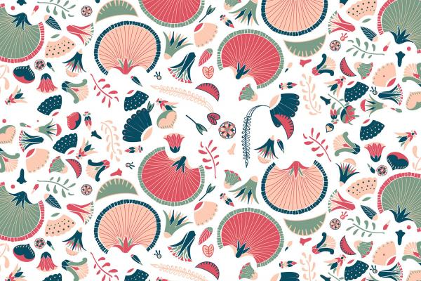 MOTIF-ILLUSTRATION-FLORAL-FLEUR-COULEURS